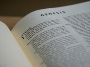 Weekly Bible Study @ Weekly Bible Study - Teleconference